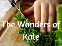wonders of Kale
